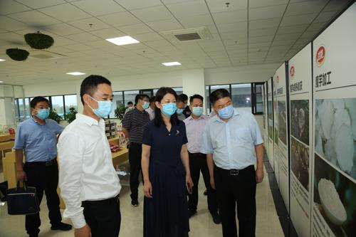 市税务局调研组来区调研工作 中国财经新闻网 www.prcfe.com